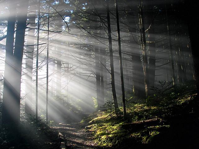 Нажмите на изображение для увеличения Название: the_eternity_of_morning_src_1.jpg Просмотров: 33 Размер:54,9 Кб ID:17869
