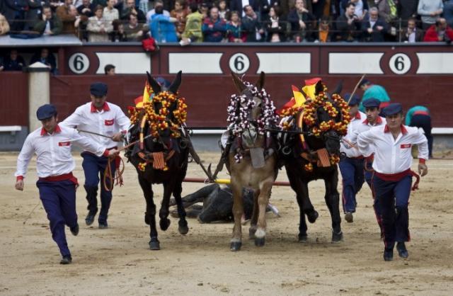 Нажмите на изображение для увеличения Название: corrida_13.jpg Просмотров: 33 Размер:52,9 Кб ID:18661