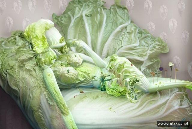 Нажмите на изображение для увеличения Название: Cabbage_Portraits_003.jpg Просмотров: 67 Размер:45,0 Кб ID:50151