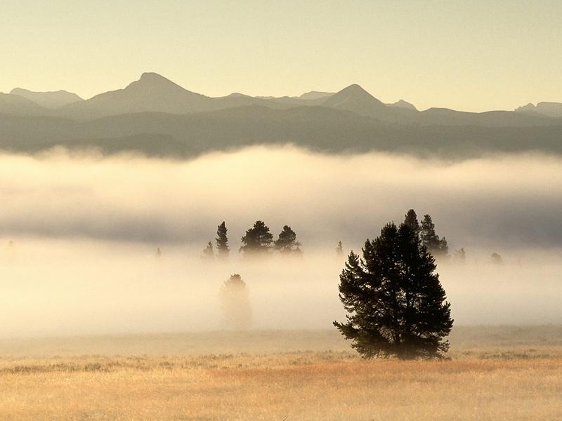 Нажмите на изображение для увеличения Название: туман.jpg Просмотров: 39 Размер:39,6 Кб ID:51283