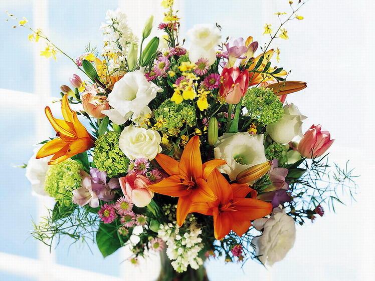 Нажмите на изображение для увеличения Название: flowers.jpg Просмотров: 20 Размер:100,2 Кб ID:52501