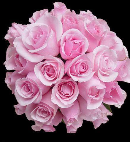 Нажмите на изображение для увеличения Название: 52417254_5217491_FlowerPic_10.jpg Просмотров: 22 Размер:31,8 Кб ID:52584