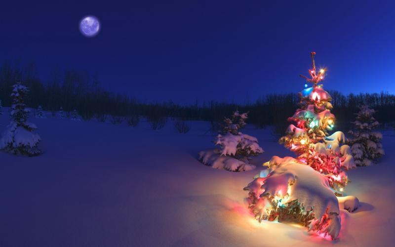 Нажмите на изображение для увеличения Название: happy_holidays_2012-wide.jpg Просмотров: 20 Размер:30,2 Кб ID:54678