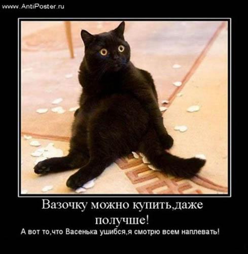 Нажмите на изображение для увеличения Название: demotivator_kupi_novuu_vazu.jpg Просмотров: 28 Размер:32,8 Кб ID:55555