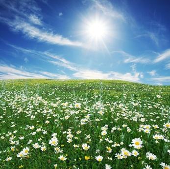 Нажмите на изображение для увеличения Название: nature_environment.jpg Просмотров: 16 Размер:69,2 Кб ID:56373