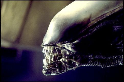 Нажмите на изображение для увеличения Название: Alien Movie.jpg Просмотров: 42 Размер:30,0 Кб ID:58226