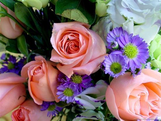 Нажмите на изображение для увеличения Название: flowers_25.jpg Просмотров: 15 Размер:43,0 Кб ID:59334