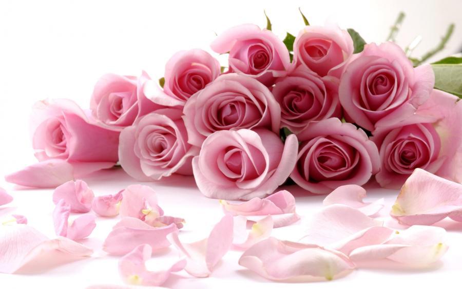Нажмите на изображение для увеличения Название: розы.jpg Просмотров: 11 Размер:53,1 Кб ID:59381