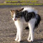 Нажмите на изображение для увеличения Название: iCAUVD2UG.jpg Просмотров: 42 Размер:6,6 Кб ID:60110