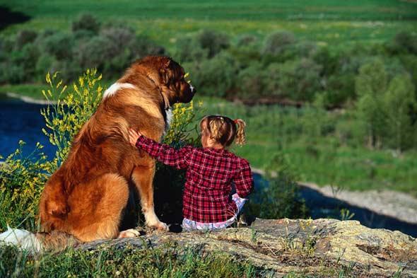Нажмите на изображение для увеличения Название: dogs-and-children.jpg Просмотров: 24 Размер:43,1 Кб ID:62576