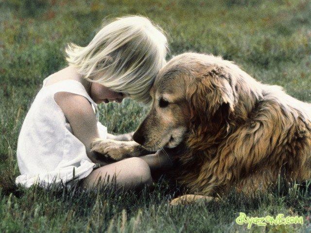 Нажмите на изображение для увеличения Название: девочка-и-собака.jpg Просмотров: 26 Размер:85,6 Кб ID:62577