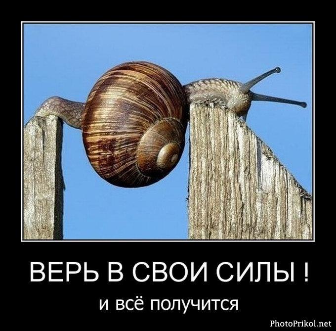 Нажмите на изображение для увеличения Название: 1314066680_demotivatory-prikoly-5-58.jpg Просмотров: 9 Размер:82,5 Кб ID:62685