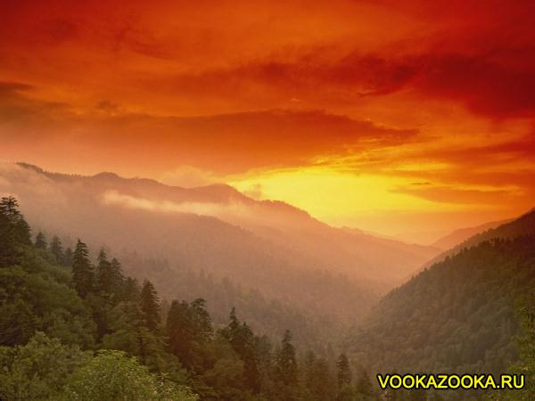 Нажмите на изображение для увеличения Название: 1324805383_vookazooka.ru-2533.jpg Просмотров: 20 Размер:26,4 Кб ID:62701