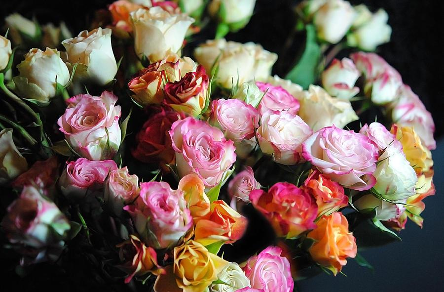 Нажмите на изображение для увеличения Название: mini-tea-roses-bouquet-cindy-boyd.jpg Просмотров: 20 Размер:119,1 Кб ID:63601