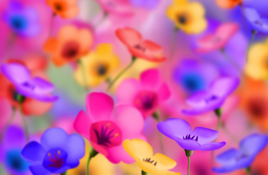Нажмите на изображение для увеличения Название: flowers-pictures_005.jpg Просмотров: 16 Размер:49,0 Кб ID:64656