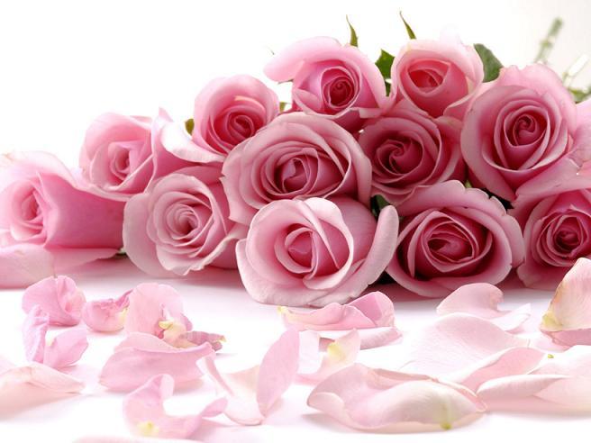 Нажмите на изображение для увеличения Название: flowers_01.jpg Просмотров: 7 Размер:40,9 Кб ID:66339