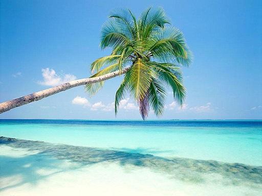 Нажмите на изображение для увеличения Название: остров.jpg Просмотров: 11 Размер:70,3 Кб ID:66380