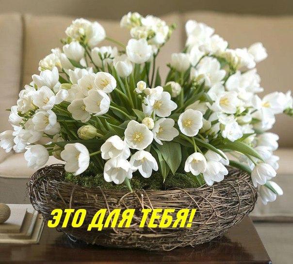 Нажмите на изображение для увеличения Название: 813c2aa2b558.jpg Просмотров: 11 Размер:89,2 Кб ID:66636
