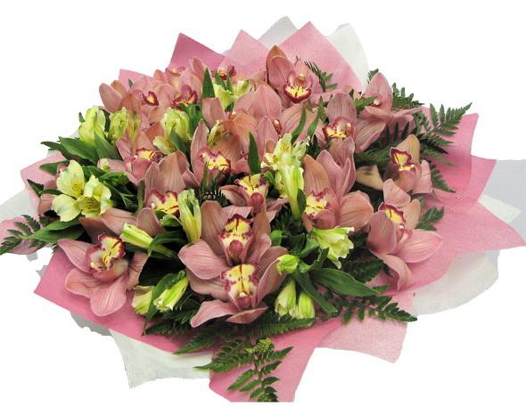 Нажмите на изображение для увеличения Название: бук орхид1.jpg Просмотров: 6 Размер:120,3 Кб ID:67939