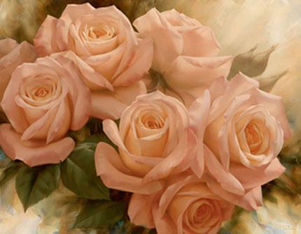 Нажмите на изображение для увеличения Название: rose-chinensis-1.jpg Просмотров: 11 Размер:30,0 Кб ID:73085