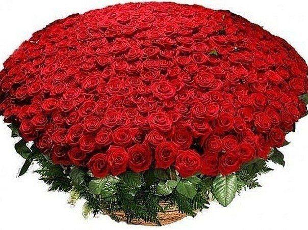 Нажмите на изображение для увеличения Название: getImage розы.jpg Просмотров: 4 Размер:82,2 Кб ID:73097