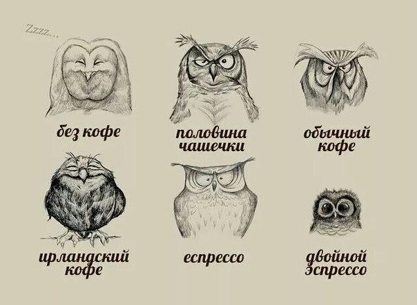 Нажмите на изображение для увеличения Название: совы и кофе_рус.jpg Просмотров: 35 Размер:46,1 Кб ID:74447