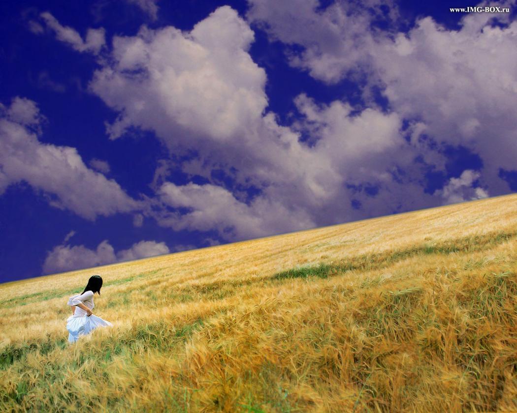 Нажмите на изображение для увеличения Название: поле.jpg Просмотров: 13 Размер:116,5 Кб ID:78806