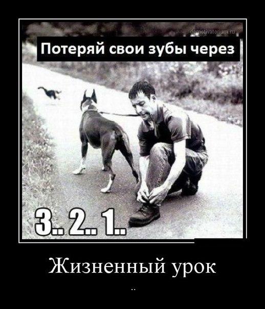 Нажмите на изображение для увеличения Название: zN_acKYNsKY.jpg Просмотров: 274 Размер:60,7 Кб ID:79260