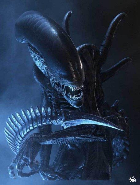Нажмите на изображение для увеличения Название: 757198_alien.jpeg Просмотров: 13 Размер:47,1 Кб ID:79710