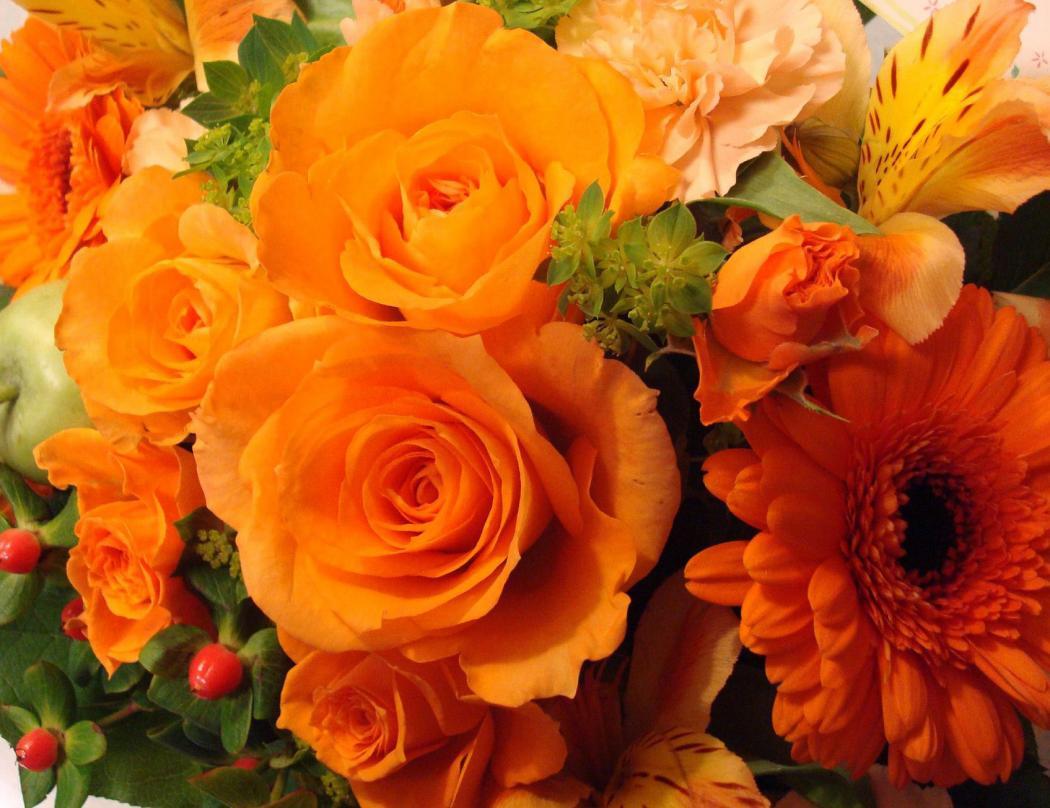 Нажмите на изображение для увеличения Название: цветы.jpg Просмотров: 10 Размер:107,7 Кб ID:81963