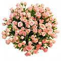Нажмите на изображение для увеличения Название: 31-kustovaja-roza.jpg Просмотров: 12 Размер:116,3 Кб ID:82641