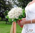 Нажмите на изображение для увеличения Название: 6955e85507b0a31cf4b9f01b0715948f--flower-types-lily-bouquet.jpg Просмотров: 18 Размер:66,9 Кб ID:82645
