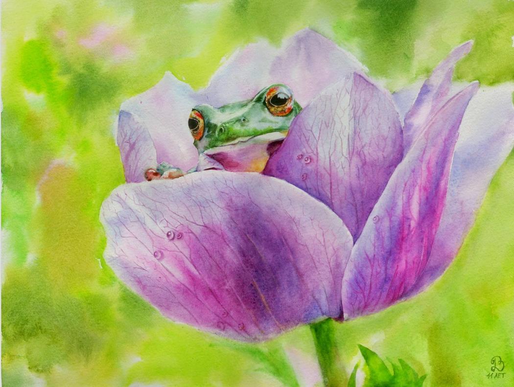 Нажмите на изображение для увеличения Название: лягушка в цветке.jpg Просмотров: 31 Размер:111,0 Кб ID:83549