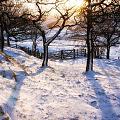 Нажмите на изображение для увеличения Название: best-places-for-winter-snow-in-the-uk-1566403538.jpg Просмотров: 22 Размер:149,9 Кб ID:84507